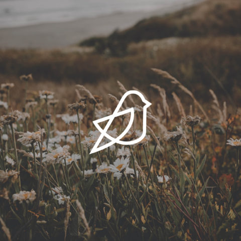 finch-daisy-logo-design-icon-overlay