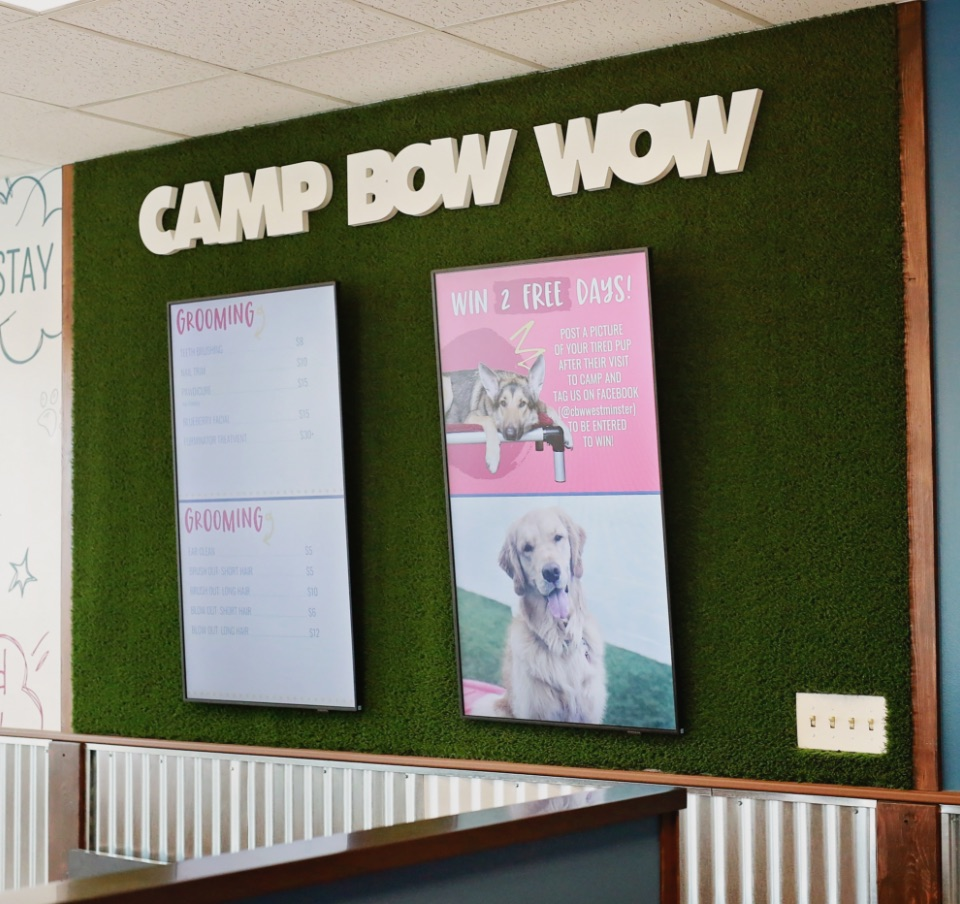camp bow wow lobby 2020