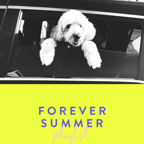 PLAYLIST-FOREVER-SUMMER-DOG-AMIK-2